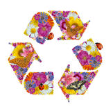Recycling symbol of flowers. Butterflies and ladybug Stock Image