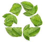 Recycling symbol from leaves. Recycling international symbol from green leaves collage image Royalty Free Stock Photography