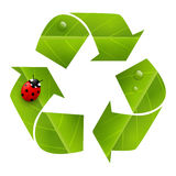 Recycling symbol with leaves texture Royalty Free Stock Images