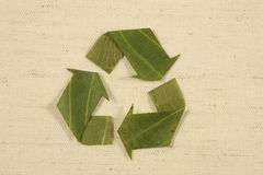 Recycling symbol made from leaves Royalty Free Stock Photography