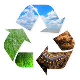 Recycling Symbol with Nature Images in it Stock Photos