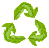 Recycling symbol on white. Recycling green symbol created from leaves. Design element on white Royalty Free Stock Image