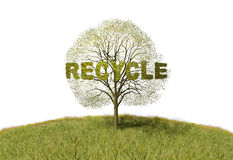 Recycling text on a tree Royalty Free Stock Photo