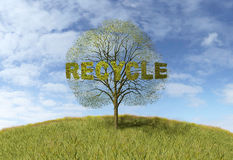 Recycling text on a tree Stock Photo