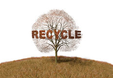 Recycling text on a tree Stock Photos