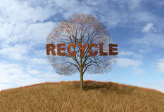 Recycling text on a tree Royalty Free Stock Photos