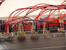 Red óptica de la fibra fotos de archivo