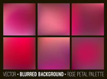 Red abstract blurred background set. Rose petal palette. Smooth design elements collection love concept Royalty Free Stock Image