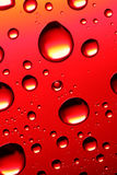 Red abstract drops Stock Image