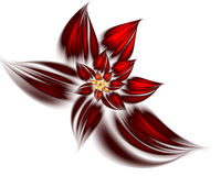Red abstract flower. Digitally generated image of red flower Royalty Free Illustration