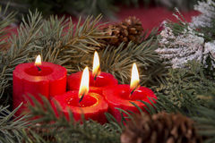 Red advent candles Royalty Free Stock Image