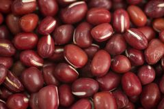Red adzuki beans Royalty Free Stock Photography