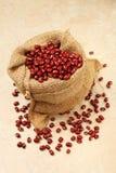 Red adzuki beans Stock Photography