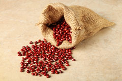 Red adzuki beans Stock Photography