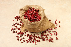 Red adzuki beans Royalty Free Stock Photo