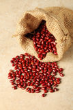 Red adzuki beans Stock Photo