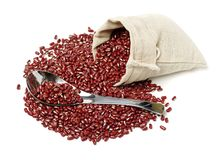Red Adzuki Beans. Silver, legume. Isolated on white background Stock Image