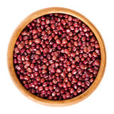 Red adzuki beans in wooden bowl over white Stock Image