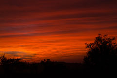 Red African sunrise Stock Image