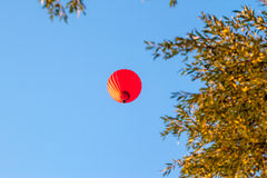Red air-balloon over trees Stock Images