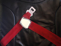 Red Airplane Safety Belt On Black Seat Royalty Free Stock Images