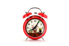 Red alarm clock with floral dial Stock Photography