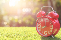 Red alarm clock on green grass with sunlight blur and bokeh back Stock Photography