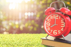 Red alarm clock on green grass with sunlight blur and bokeh back Stock Photos