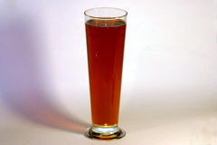 Red Ale. A nice tall glass of red ale Beer. Tall clear schooner glass Stock Photos