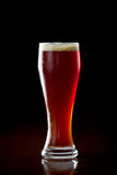 Red ale beer Royalty Free Stock Photos