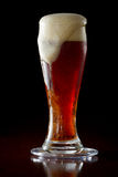 Red ale beer. Cold red ale served in a cold glass on a dark bar Stock Photos