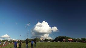 Red Alert kite team performs stock footage
