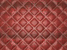 Red Alligator skin with stitched rectangles. Useful as texture or background Stock Photos