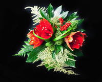 Red amaryllis. Bouquet composition with red amaryllis on black background Stock Photo