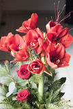 Red Amaryllis. Bouquet with red amaryllis and roses Stock Photo