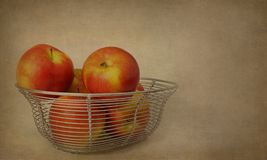 Red ambrosia apples in wire basket. A bunch of red ambrosia apples in a wire basket with textured background royalty free stock image