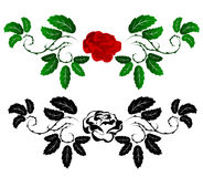 Red And Black Rose Stock Image