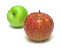 Free Red And Green Apple Royalty Free Stock Photos - 4204978