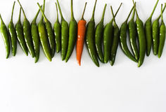 Red And Green Hot Chili Peppers Royalty Free Stock Photos