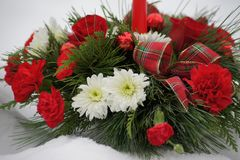 Free Red And White Christmas Flower Arrangement. Stock Images - 126544164