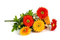 Free Red And Yellow Flower Stock Image - 59034101