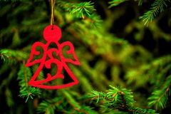 Red angel on spruce tree. Red angel made of felt on spruce tree Royalty Free Stock Images