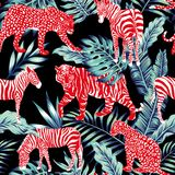 Red animal blue jungle. Red wild animal zebra, tiger, leopard, panther in the blue leaves jungle on the dark night background Royalty Free Stock Photo