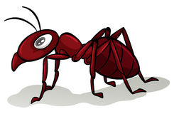 Red ant. One red ant on a white background Stock Photos