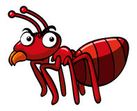 Red ant with serious face. Illustration Stock Photo