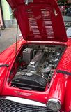 Red antique Austi Healey 300 - open car  engine Royalty Free Stock Image
