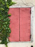 Red antique window with ivy on the wall. Old red window Royalty Free Stock Images