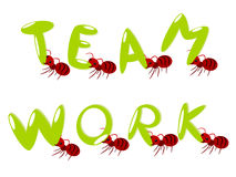 Red ants teamwork illustration Royalty Free Stock Photos
