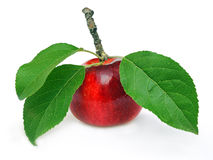 Red apple. With green leaves Stock Image