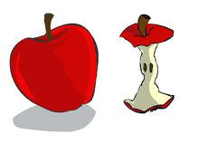 Red Apple. A big red apple and a torso of an apple Stock Images